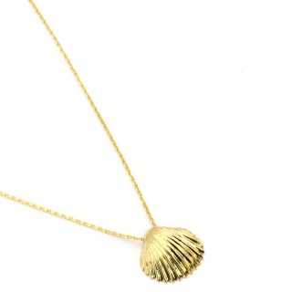 Gold plate Necklace - Shell summer time